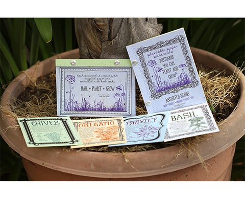 Assorted Herbs Plantable Paper Postcards (S0330)