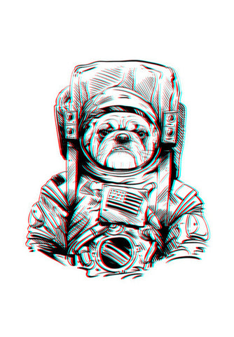 3D Space Dog Wall Art | Artist : Pulkit Taneja