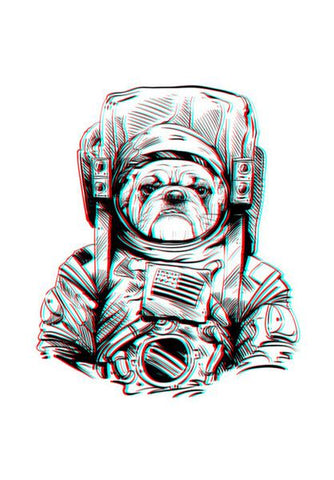 PosterGully Specials, 3D Space Dog Wall Art | Artist : Pulkit Taneja, - PosterGully