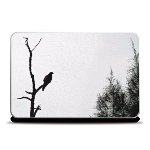 Laptop Skins, Wild, - PosterGully