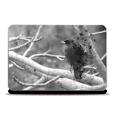 birdie #ashtag Laptop Skins | Artist : Aakarsh Sharma