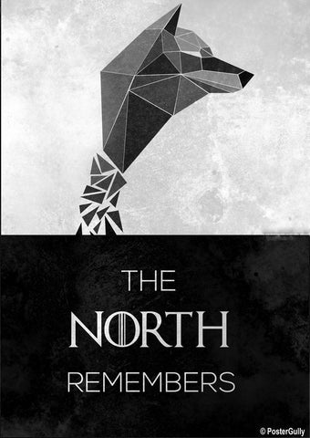 Wall Art, The North Remembers Artwork | Artist: Kumaraditya Dash, - PosterGully - 1