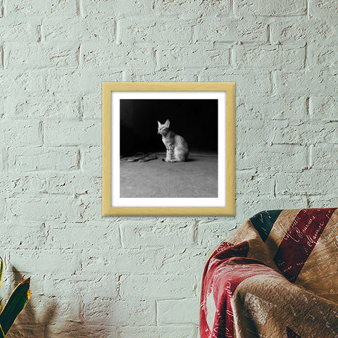The Temple Cat Premium Square Italian Wooden Frames | Artist : Design Chanakya