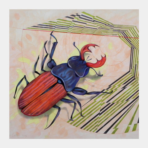 Stag Beetle Square Art Prints PosterGully Specials