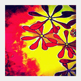 Square Art Prints, Sunshine Artwork | Artist: Awanika Anand, - PosterGully
