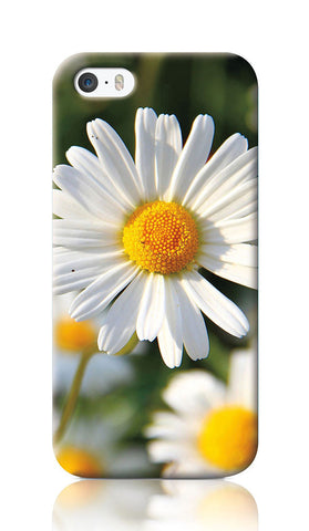iPhone Cases, White Daisies iPhone 5/5S Case | Artist: Inderpreet, - PosterGully