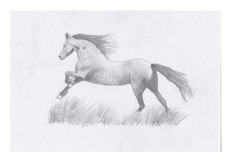 The Stallion Wall Art  | Artist : Saswata Das