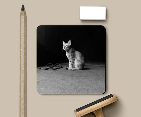 The Temple Cat Coasters | Artist : Design Chanakya