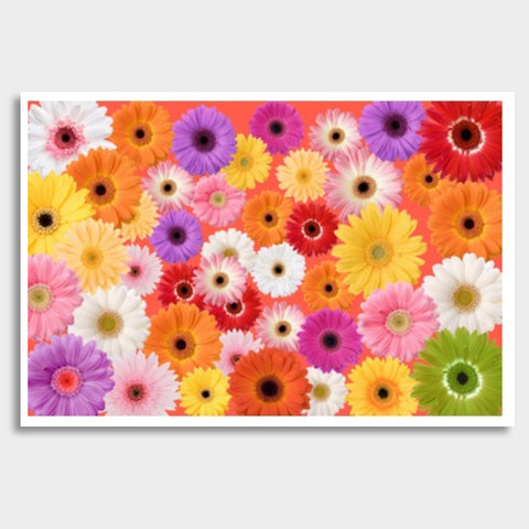 Covered with flowers Giant Poster | Artist : Pallavi Rawal