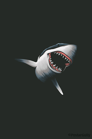 Shark Artwork