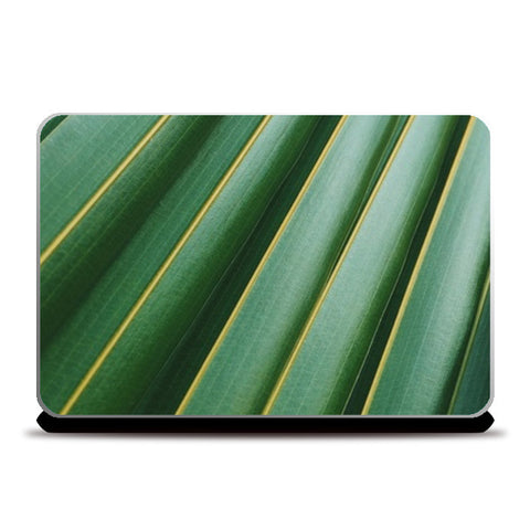 Laptop Skins, Tree Laptop Skins | Artist : Manju Nk, - PosterGully