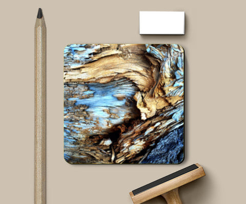 Into the Woods | Nature Edition Coasters | Artist : Aditya Gupta
