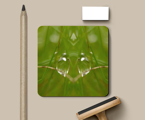 Coasters, Best of Nature Coasters | Artist : Hemant Kumar Gandhi, - PosterGully