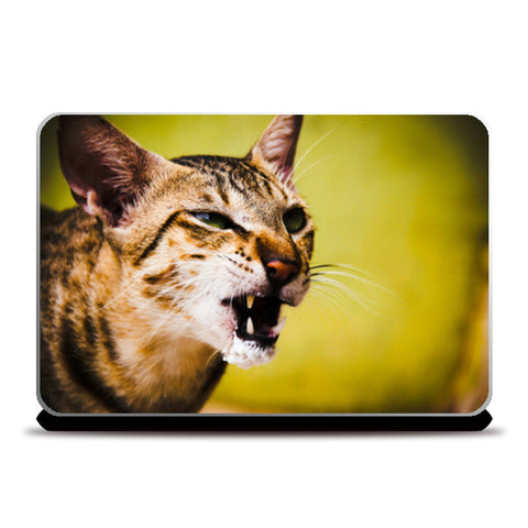 Furrocious Cat Laptop Skins | Artist : Richard Howardson