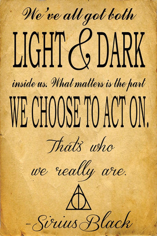 Harry potter Sirius Quote  Wall Art | Artist : Gauri Deshpande