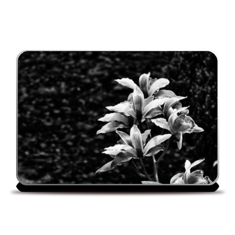 Nature - Black & White Laptop Skins | Artist : Swati Saxena