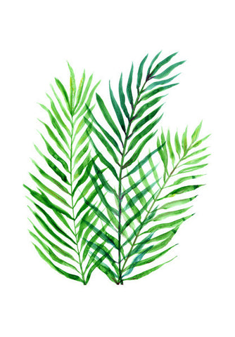 Green Palm Leaves Tropical Background Watercolor Illustration Wall Art | Artist : Seema Hooda