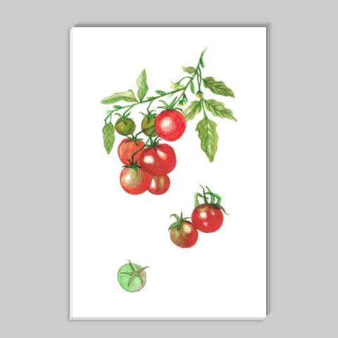 Tomatoes Kitchen Vegetable/Fruit Art  Stick Ons | Artist : Seema Hooda