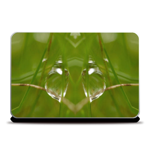 Laptop Skins, Best of Nature Laptop Skins | Artist : Hemant Kumar Gandhi, - PosterGully