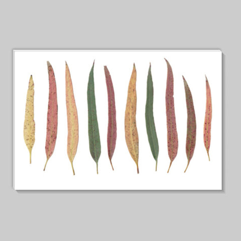 Green Eucalyptus Leaves Botanical Illustration Nature Decor Stick Ons | Artist : Seema Hooda