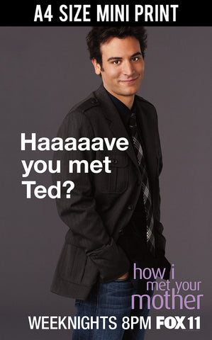 Mini Prints, HIMYM | Have you met Ted? | Mini Print, - PosterGully