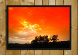Glass Framed Posters, Orange Sky And Trees Landscape Glass Framed Poster, - PosterGully - 1