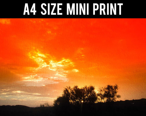 Mini Prints, Orange Sky And Trees | Landscape | Mini Print, - PosterGully