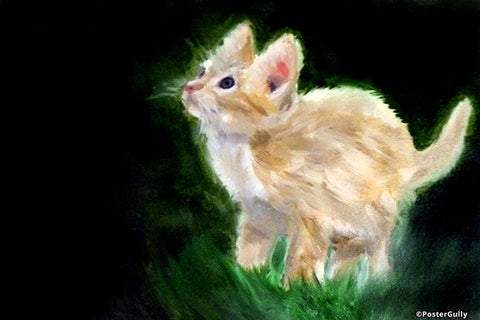 Wall Art, Cute Kitten Oil Painting | Artist: Masaad Amoodi, - PosterGully - 1