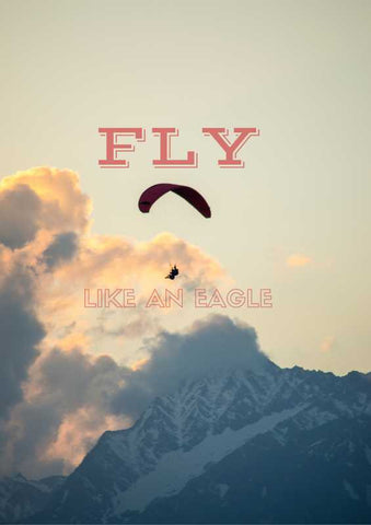 Brand New Designs, Fly Like An Eagle Artwork  | Artist: Pankaj Mullick, - PosterGully