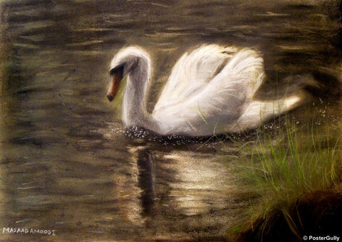 Wall Art, Swan | By Masaad, - PosterGully