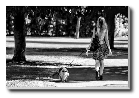 Canvas Art Prints, Girl With A Dog Walking Stretched Canvas Print, - PosterGully - 1