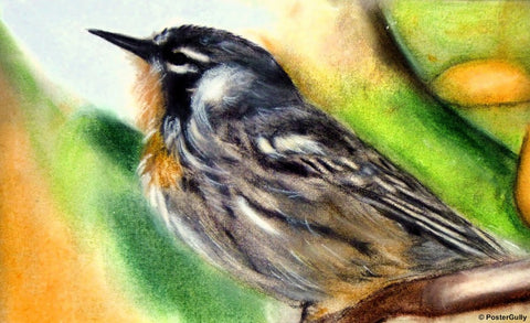 Wall Art, Little Bird Painting, - PosterGully