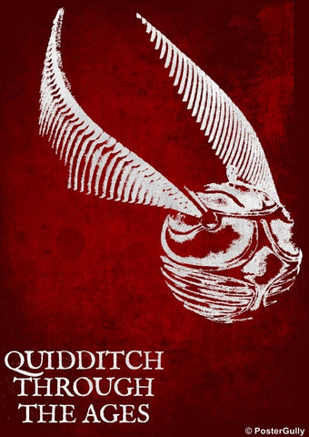 Wall Art, Harry Potter Quidditch, - PosterGully