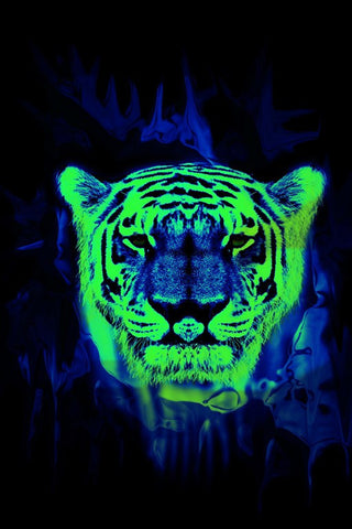 Wall Art, Neon Tiger Art, - PosterGully