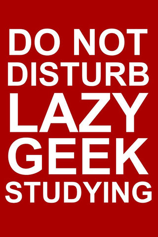 Wall Art, Do Not Disturb Lazy Geek Studying, - PosterGully