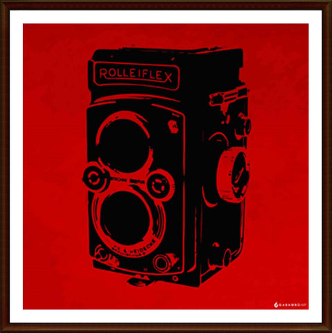 Yash Raj, Vintage Camera - Red, - PosterGully