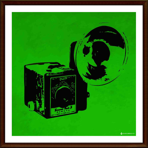 Yash Raj, Vintage Camera - Green, - PosterGully