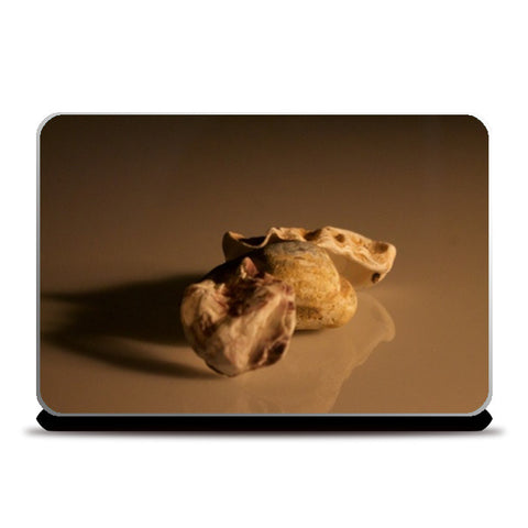 Laptop Skins, Sea Shells Laptop Skin | Kaushikee Gupta, - PosterGully