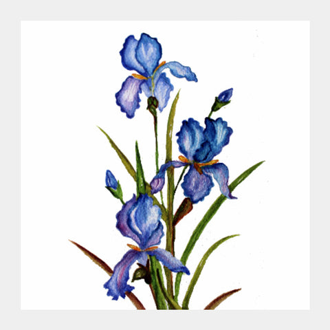 Square Art Prints, Blue Iris Square Art Print l Artist: Seema Hooda, - PosterGully