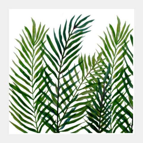 Painted Tropical Palm Tree Leaves Summer Botanical Nature Square Art Prints | Artist : Seema Hooda