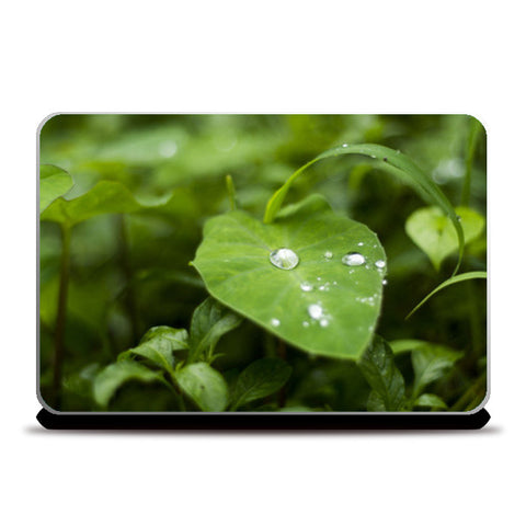 Water Drops Love Green Laptop Skins | Artist : Kashish Grover