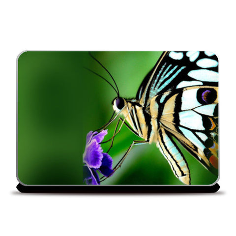 Laptop Skins, Butterfly Beauty Laptop Skins | Artist : Pranit Jaiswal, - PosterGully