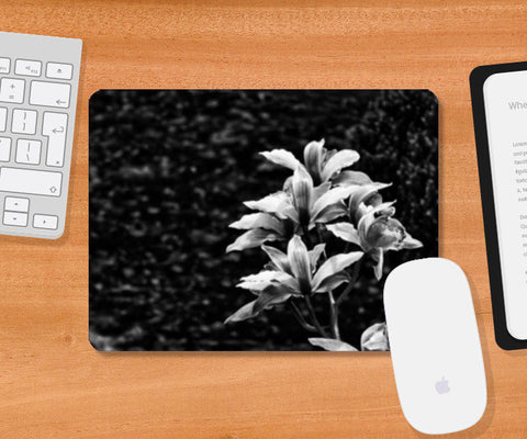 Nature - Black & White Mousepad | Artist : Swati Saxena