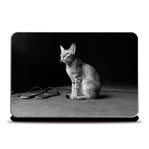 The Temple Cat Laptop Skins | Artist : Design Chanakya