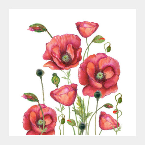 Poppy Flowers Watercolor Painting Elegant Floral Art Design Square Art Prints | Artist : Seema Hooda