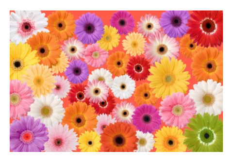 Flowers everywhere Wall Art  | Artist : Pallavi Rawal