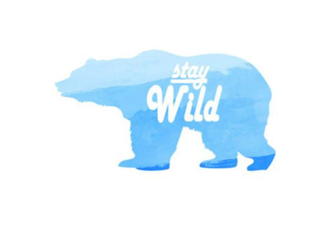 PosterGully Specials, Stay Wild. Wall Art  | Artist : Anniez Artwork, - PosterGully