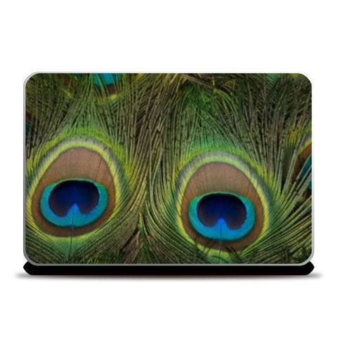 Laptop Skins, Peacock Feathers Laptop Skins | Artist : CK GANDHI, - PosterGully