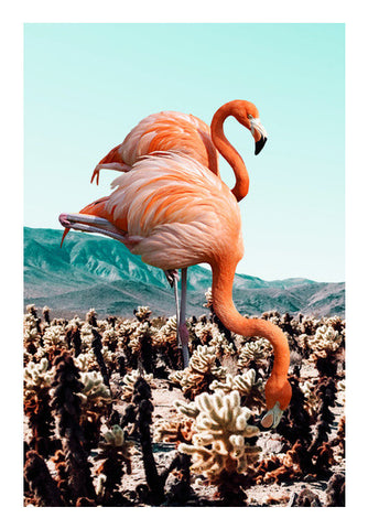 Flamingos in the Desert Wall Art | Artist : Uma Gokhale