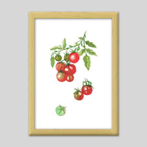 Tomatoes Kitchen Vegetable/Fruit Art Print Watercolor Painting ...
